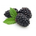 ELiquid 30ml Blackberry E-Liquid