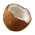 ELiquid 30ml Coconut E-Liquid