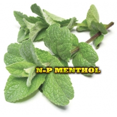 ELiquid 30ml Npure Menthol E-Liquid