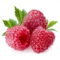 ELiquid 30ml Raspberry E-Liquid